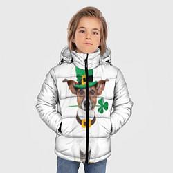 Куртка зимняя для мальчика Ирландия цвета 3D-черный — фото 2