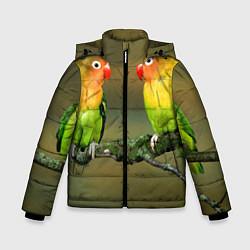 Куртка зимняя для мальчика Два попугая цвета 3D-черный — фото 1