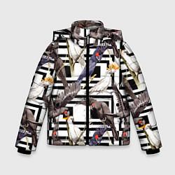Куртка зимняя для мальчика Попугаи Какаду цвета 3D-черный — фото 1