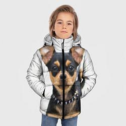 Куртка зимняя для мальчика Чихуахуа цвета 3D-черный — фото 2