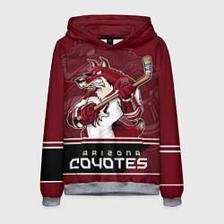 Толстовка-худи мужская Arizona Coyotes цвета 3D-меланж — фото 1