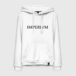 Толстовка-худи хлопковая мужская Imperivm цвета белый — фото 1