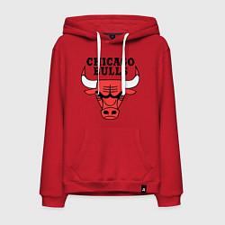 Толстовка-худи хлопковая мужская Chicago Bulls цвета красный — фото 1