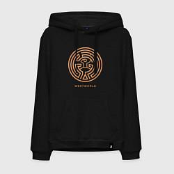 Толстовка-худи хлопковая мужская Westworld labyrinth цвета черный — фото 1