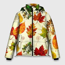 Куртка зимняя мужская Осень цвета 3D-черный — фото 1