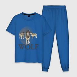 Пижама хлопковая мужская Wolf Pack цвета синий — фото 1