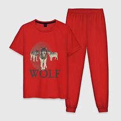 Пижама хлопковая мужская Wolf Pack цвета красный — фото 1