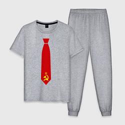 Пижама хлопковая мужская Советский галстук цвета меланж — фото 1