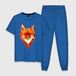 Пижама хлопковая мужская Огенный лис цвета синий — фото 1