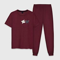 Пижама хлопковая мужская Кисы цвета меланж-бордовый — фото 1