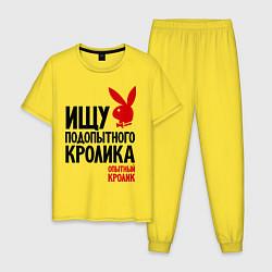 Пижама хлопковая мужская Ищу подопытного кролика цвета желтый — фото 1