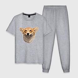 Пижама хлопковая мужская Улыбчивый Корги цвета меланж — фото 1
