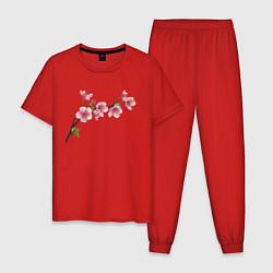 Пижама хлопковая мужская Весна 2020 цвета красный — фото 1