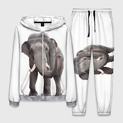 Костюм мужской Большой слон цвета 3D-меланж — фото 1