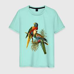 Мужская хлопковая футболка с принтом Тропические попугаи, цвет: мятный, артикул: 10147819300001 — фото 1