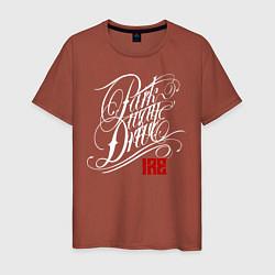 Футболка хлопковая мужская Parkway Drive: IRE цвета кирпичный — фото 1