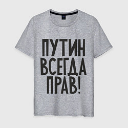 Футболка хлопковая мужская Путин всегда прав! цвета меланж — фото 1