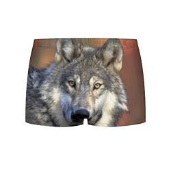 Трусы-боксеры мужские Улыбка волка цвета 3D — фото 1