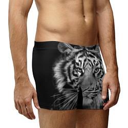 Трусы-боксеры мужские Красавец тигр цвета 3D-принт — фото 2