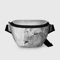 Поясная сумка Мудрый лев цвета 3D-принт — фото 1