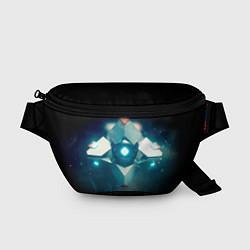 Поясная сумка Destiny 4 цвета 3D-принт — фото 1